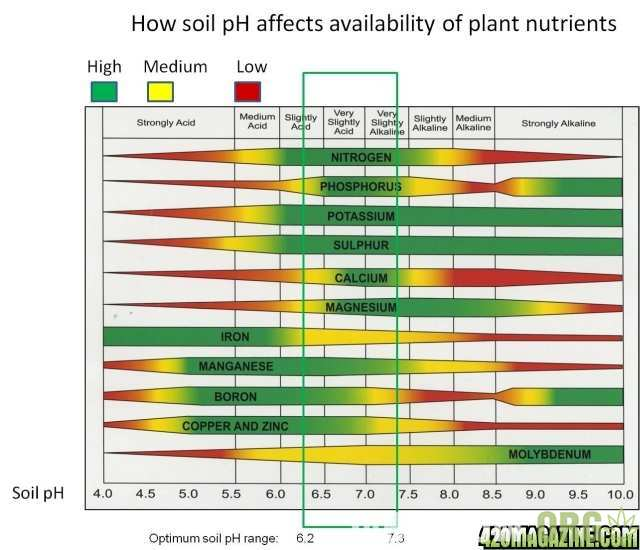 soil_ph_nutrient_availability.jpg.0d8d211846ea0795f5f8176432fd99fb.jpg