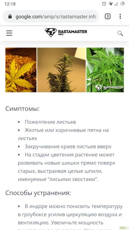 Screenshot_20201209-121851_Chrome.png