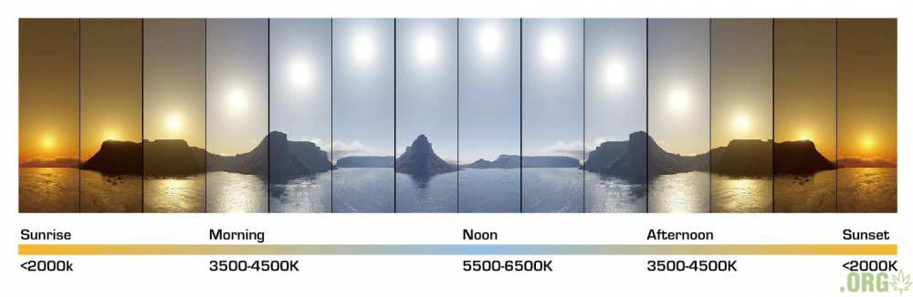color-temperature-daylight.jpg