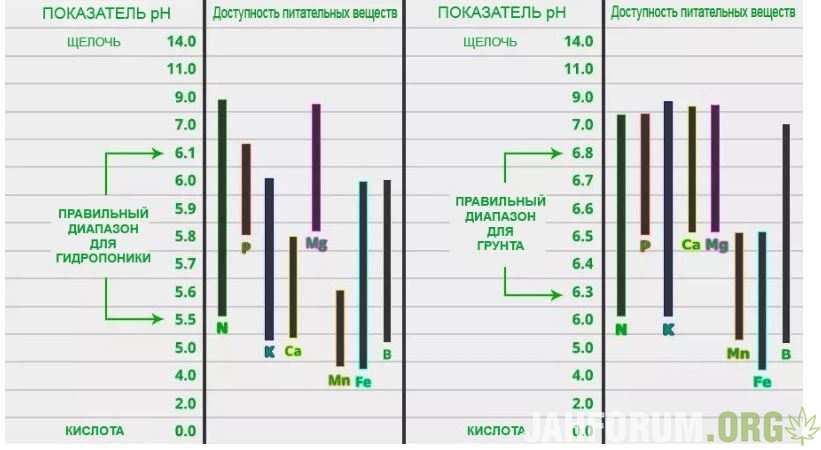 pH.JPG.9ae820b76758165e7d0c5aaaad0aafa8.JPG