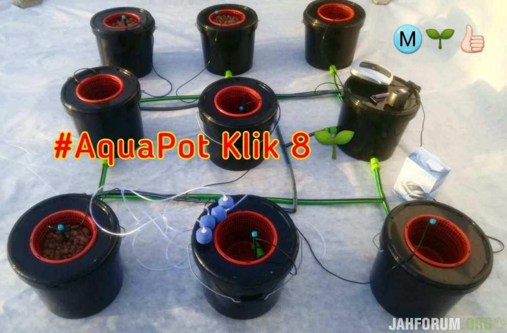 aquapot 8.jpg