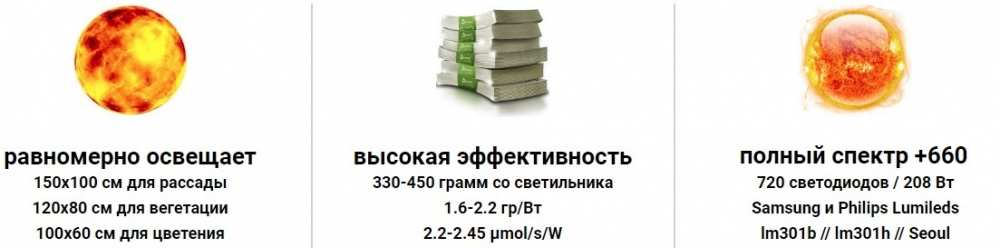 1578032528_apollo.thumb.jpg.c146986e18adff25e325e642072959be.jpg