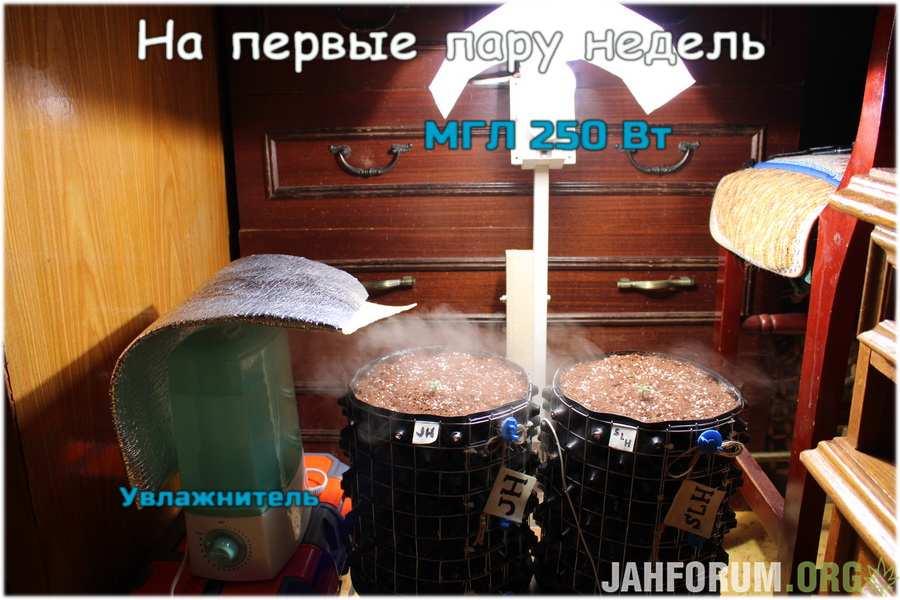 large.IMG_9967_900x600.JPG.f25d333ed23b46c90cb281119909d5a6.JPG