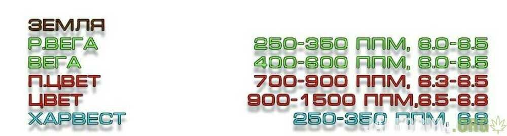 46677888.jpg