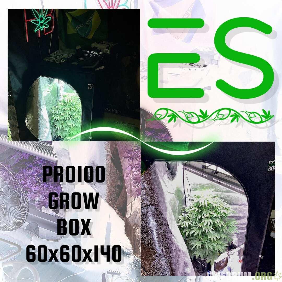 E43D94F3-9171-4AB7-9FD9-40B31ACF8F64.jpeg