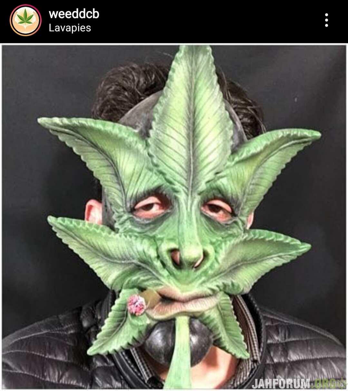 Фотка из чужого  инстаграма
