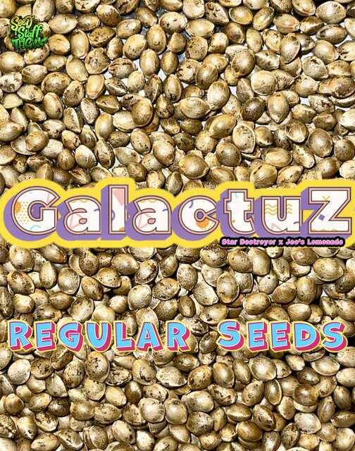 GalactuZ