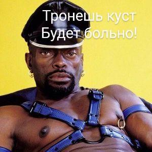 300px-Чёрный_Властелин~2.jpg