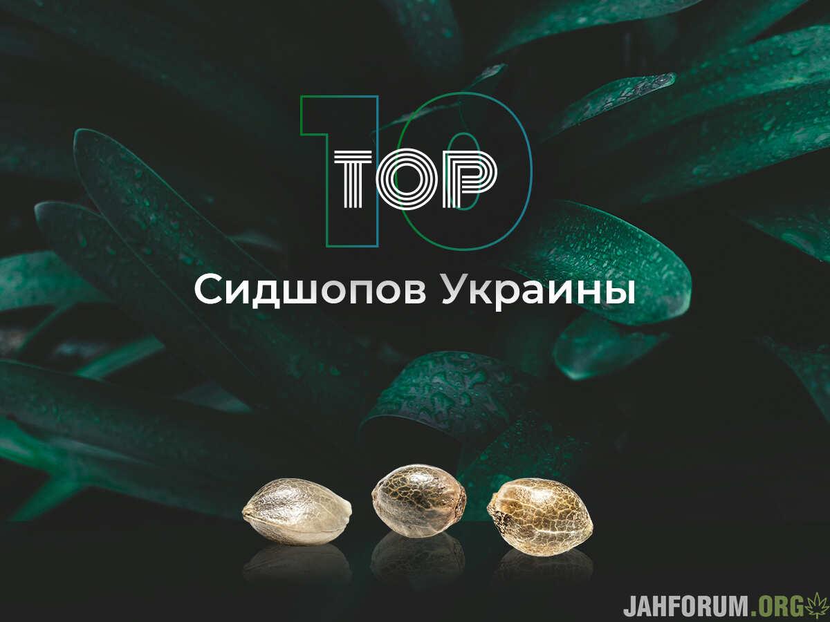 Топ 10 сидшопов Украины!