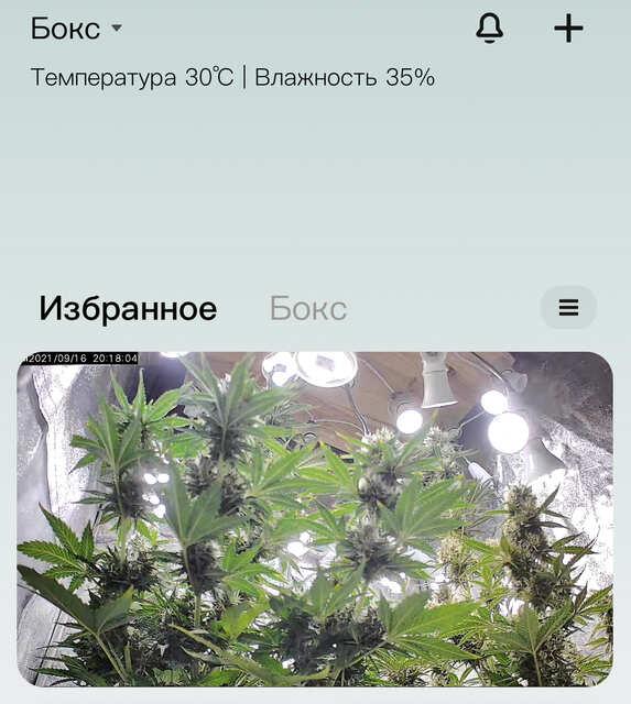 Фулл контроль )
