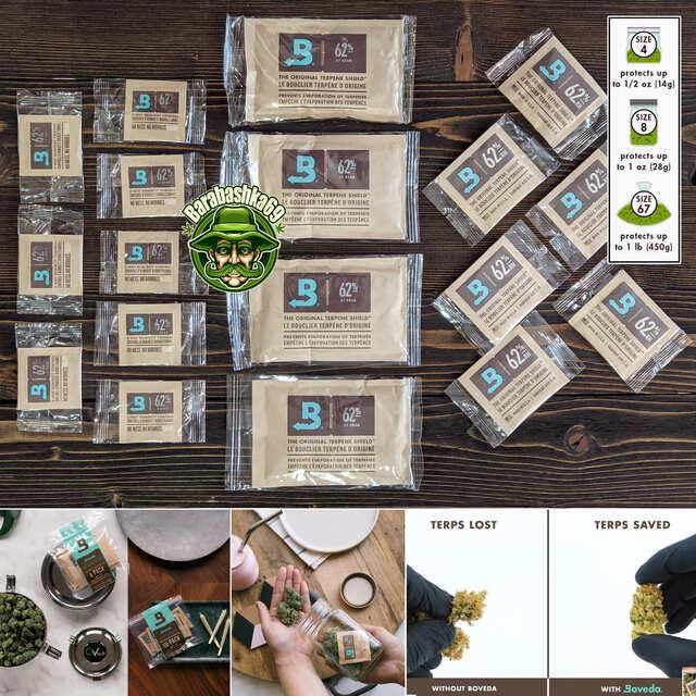 Seeds for Sale (UA)